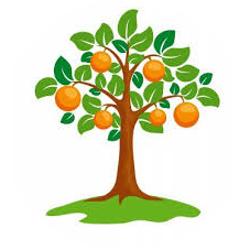 orange-tree.png